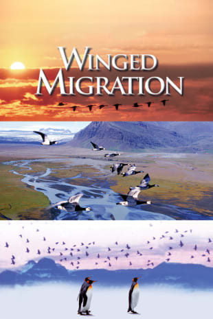 movie poster for Winged Migration