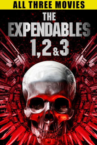 movie poster for The Expendables 1, 2, & 3
