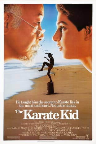 movie poster for The Karate Kid (1984)