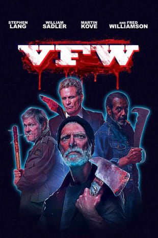 movie poster for VFW