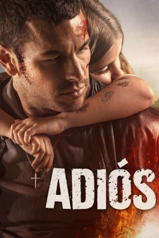 movie poster for Adios