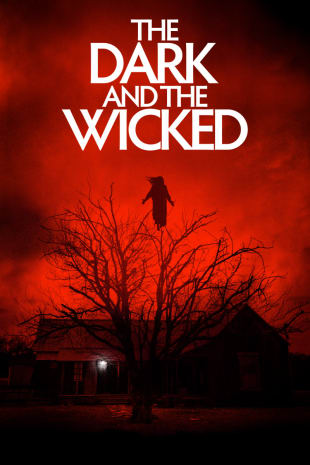 movie poster for The Dark and the Wicked