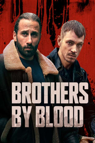 movie poster for Brothers By Blood