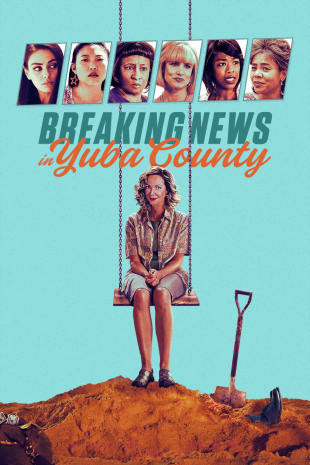 movie poster for Breaking News In Yuba County