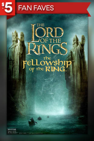 movie poster for Lord Of The Rings: The Fellowship Of The Ring (2001)