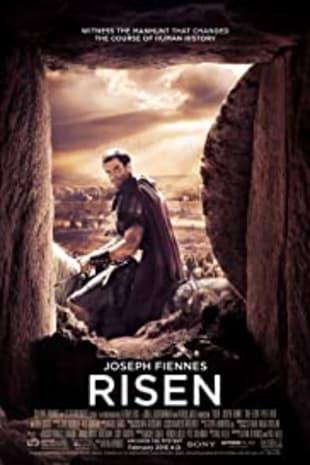 movie poster for Risen