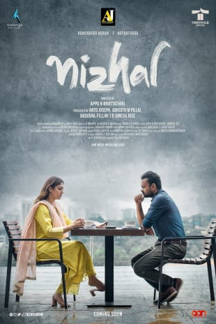movie poster for Nizhal