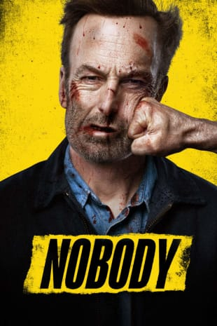 movie poster for Nobody
