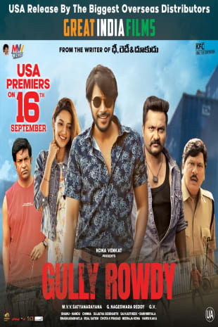 movie poster for Gully Rowdy