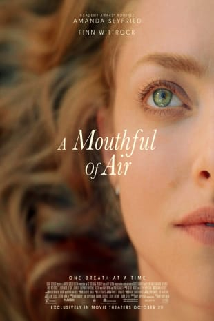 movie poster for A Mouthful of Air