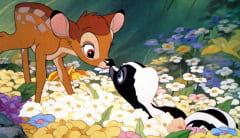 Image from Bambi