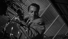 Scene from Invasion of the Body Snatchers