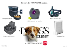 A Dog's Journey Prize Pack