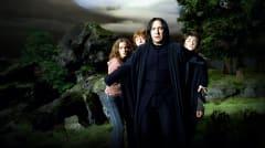 Snape, Harry, Hermione, Ron