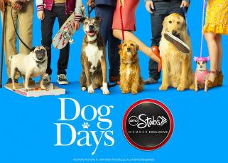 Dog Days Sweeps