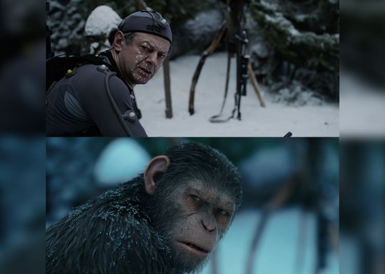 Promotional image for War For The Planet Of The Apes