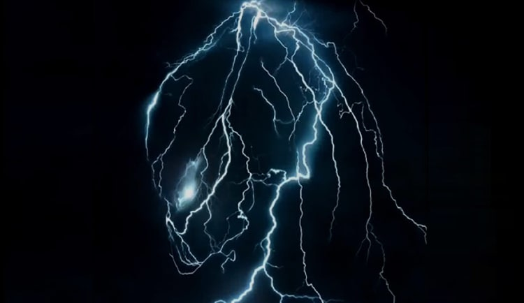 Promotional image for The Predator