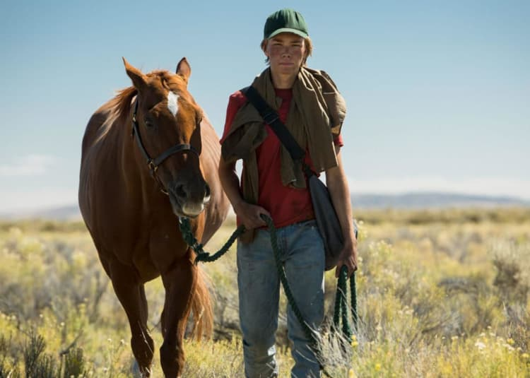 Promotional image for Lean On Pete