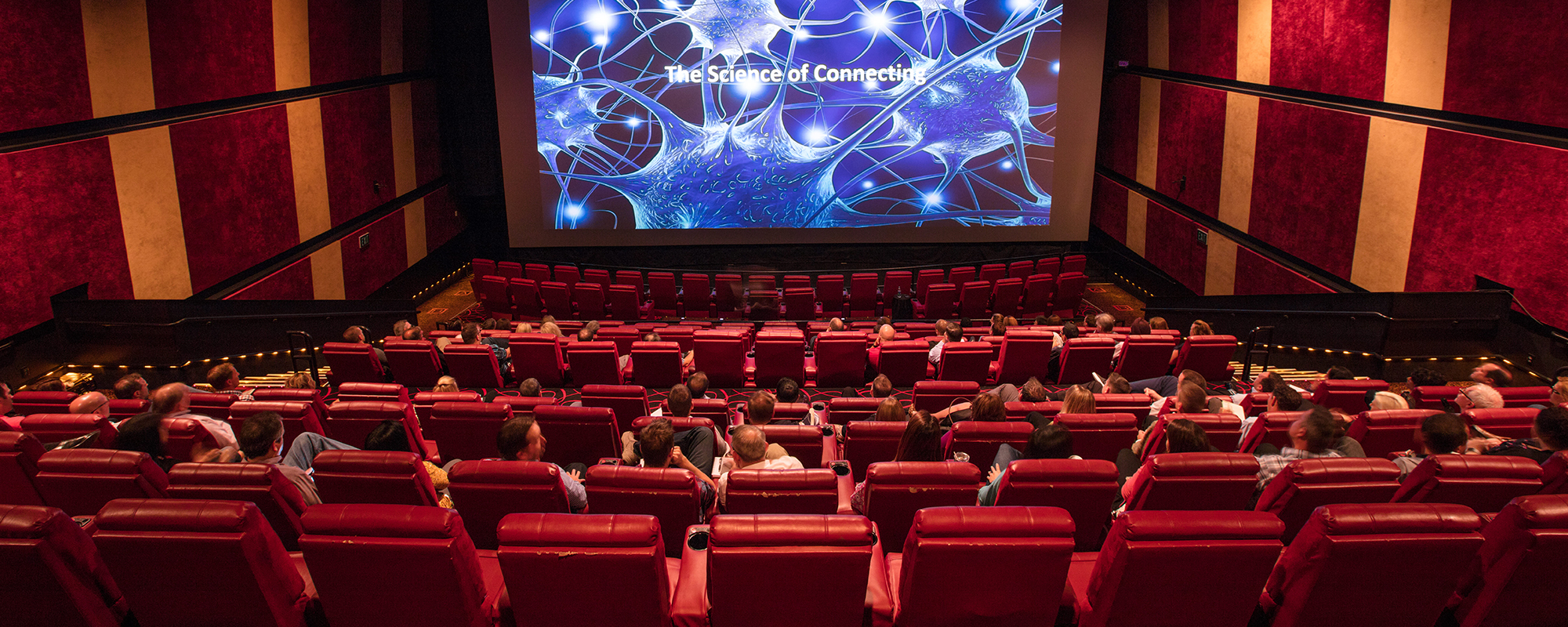 Image result for movie theatre